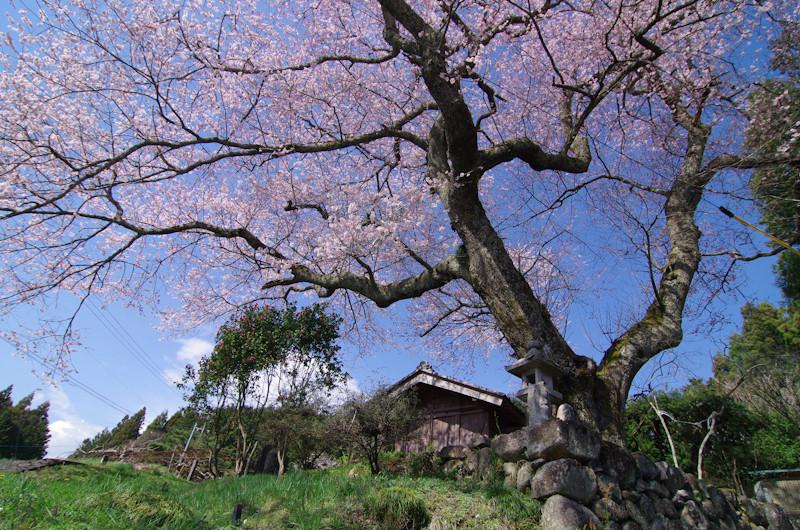 Ohakura201404